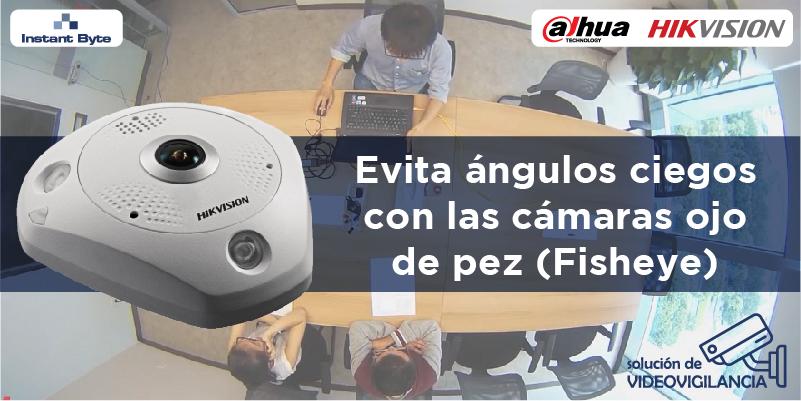 Evita los ángulos ciegos con las cámaras ojo de pez (Fisheye)